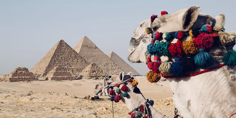 Visite du Caire et des pyramides de Gizeh